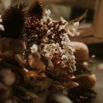 Wild Hearts NZ - Dried Flower Bouquet